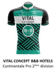 Vita concept